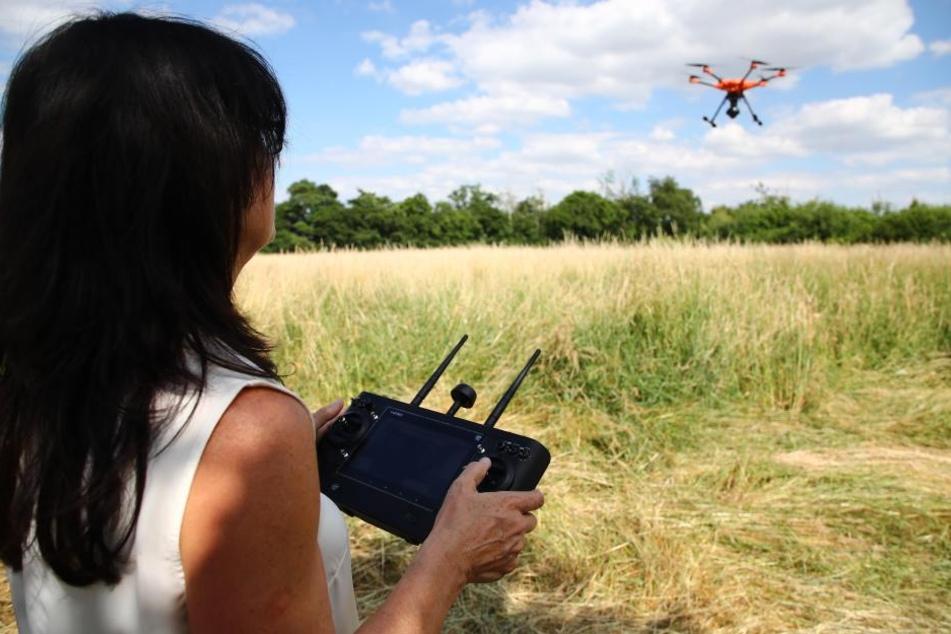 Mit Hilfe einer Drohne kontrollieren die Tierschützer die Felder, ob sich junge Rehe dort aufhalten.