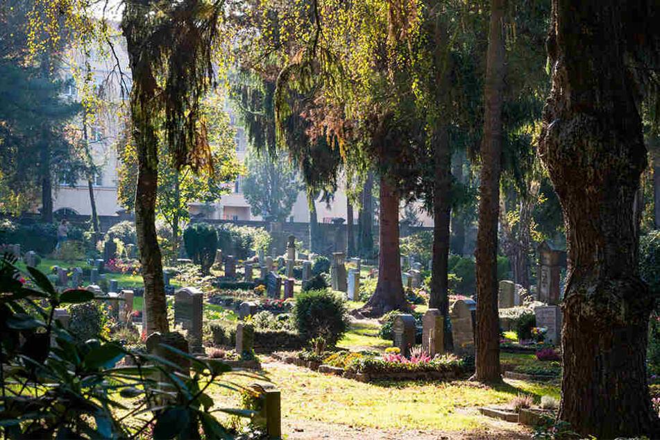 Für tödliche Pandemien will die Stadt künftig Reserve-Grabflächen freihalten.