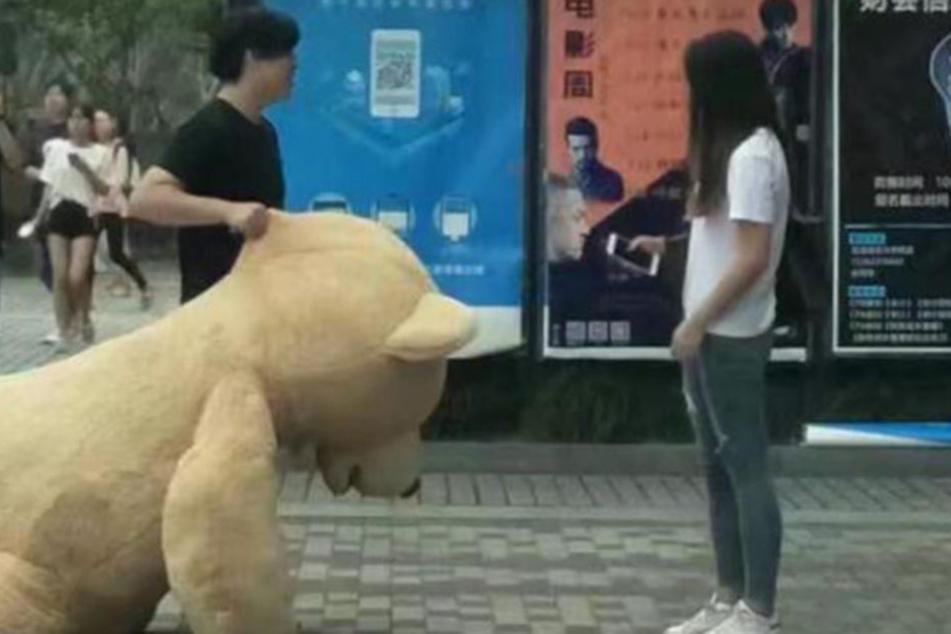 """""""Ich mag den Teddybär, dich nicht!"""" Tragisches Ende einer Lovestory"""