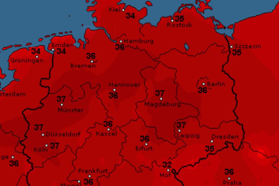 Nicht nur der Norden von Deutschland errötet am Dienstag noch mal so richtig.