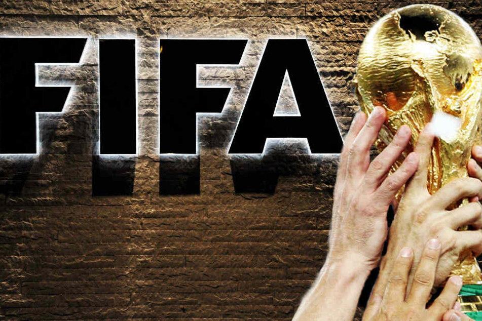 Fußball-WM soll alle zwei Jahre stattfinden: Zu viel des Guten?