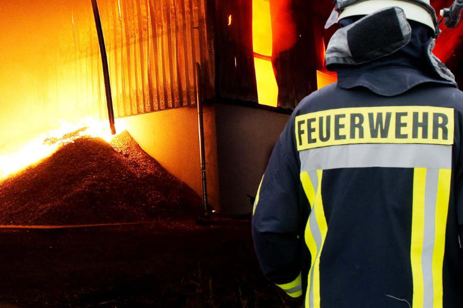 Sägewerk in Flammen: Feuerwehr muss stundenlang kämpfen