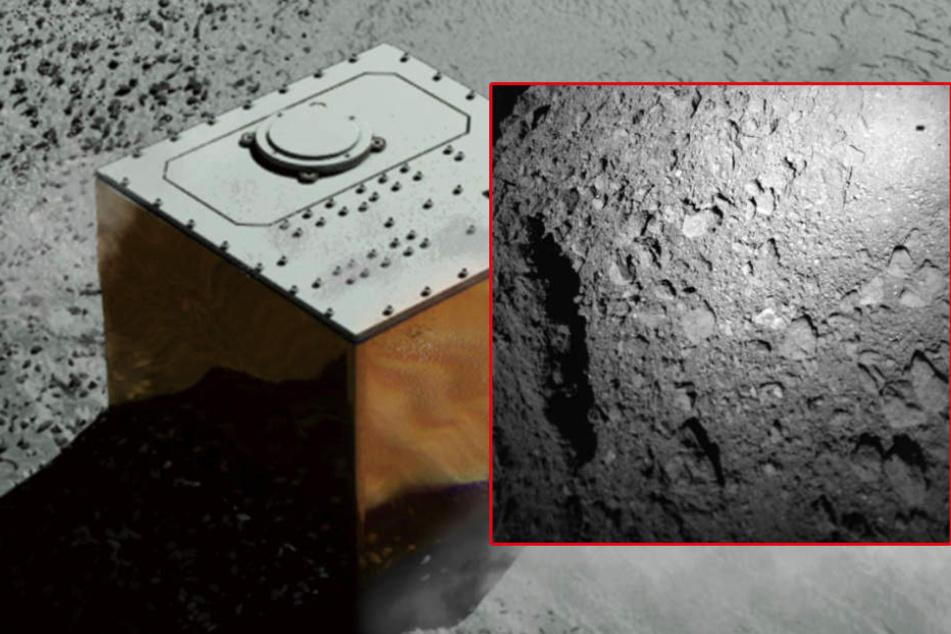 """Erfolgreich gelandet! Raumsonde """"Mascot"""" schickt erste Bilder vom Asteroiden"""