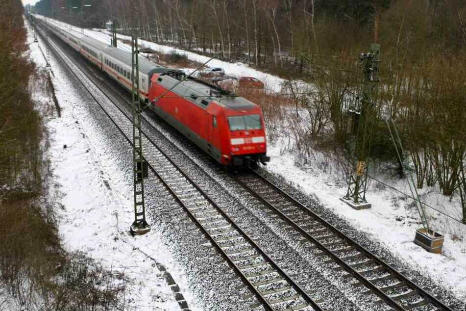Der mit rund 200 Passagieren besetzte Zug raste in einen brennenden Baum. (Symbolfoto).