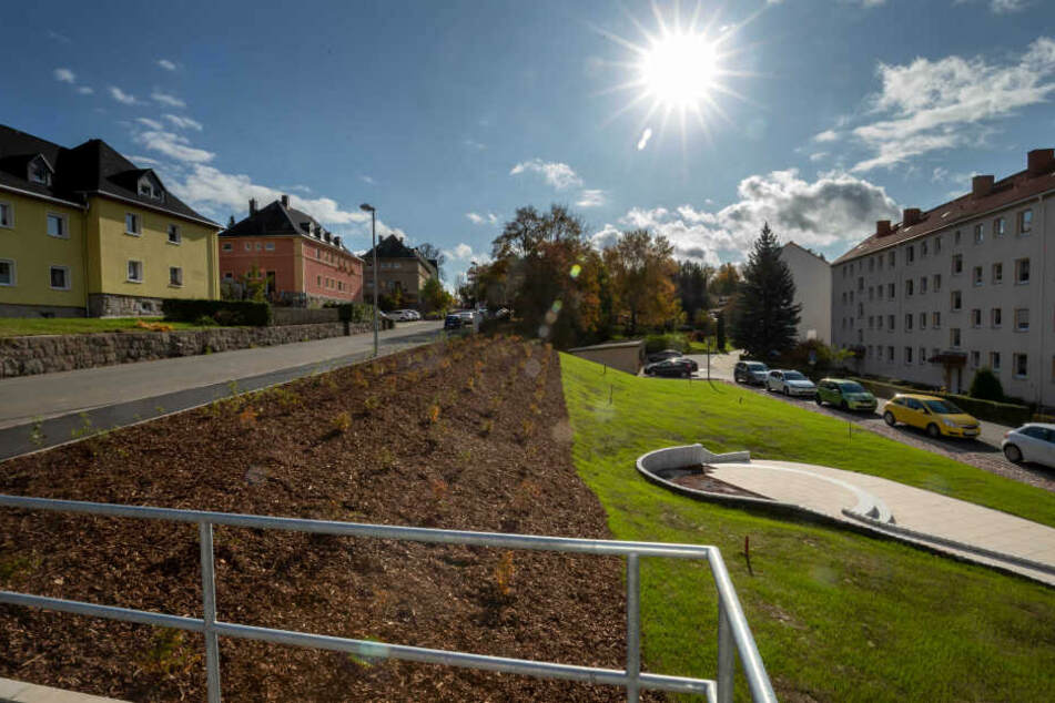 Auf der Brache im Wohngebiet Eichert wächst schon Gras - bald kommen noch Obstbäume dazu.