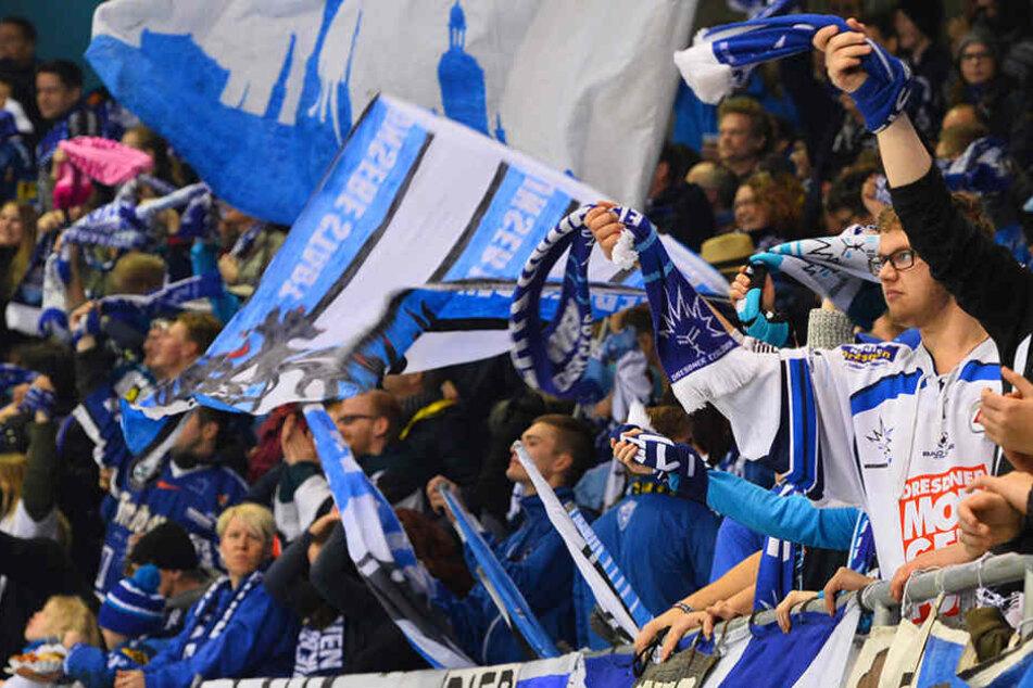 Bei bester Stimmung sahen die Fans der Dresdner Eislöwen ihre Mannschaft siegen.