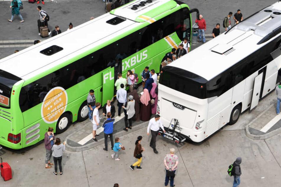 Das Foto aus dem Jahr 2017 zeigt Fernbusse an einem Terminal am Hauptbahnhof Frankfurt.