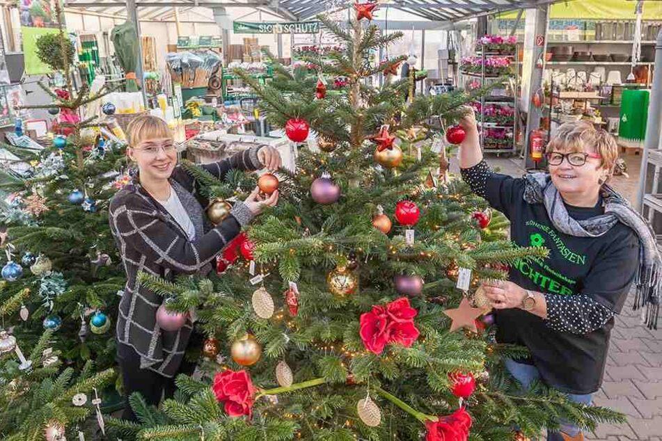 Anregungen für neue Dekorationen geben Doreen Richter (32) und Petra  Hentschel (55) mit geschmückten Schau-Bäumen.