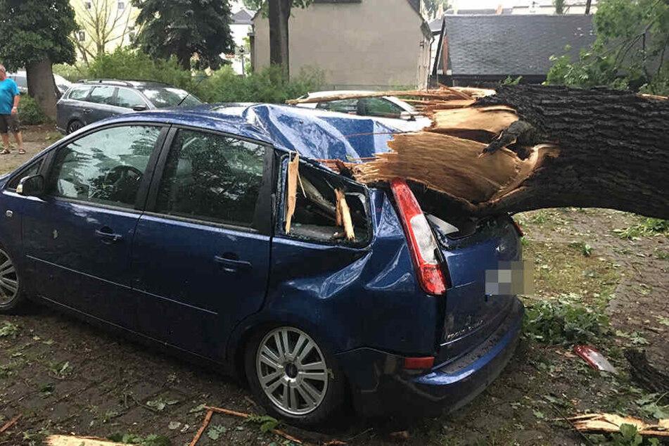 In Königsbrück isind mehrere Bäume umgefallen. Ein Baum liegt auf einem Auto. Ebenfalls ist teilweise der Strom ausgefallen.