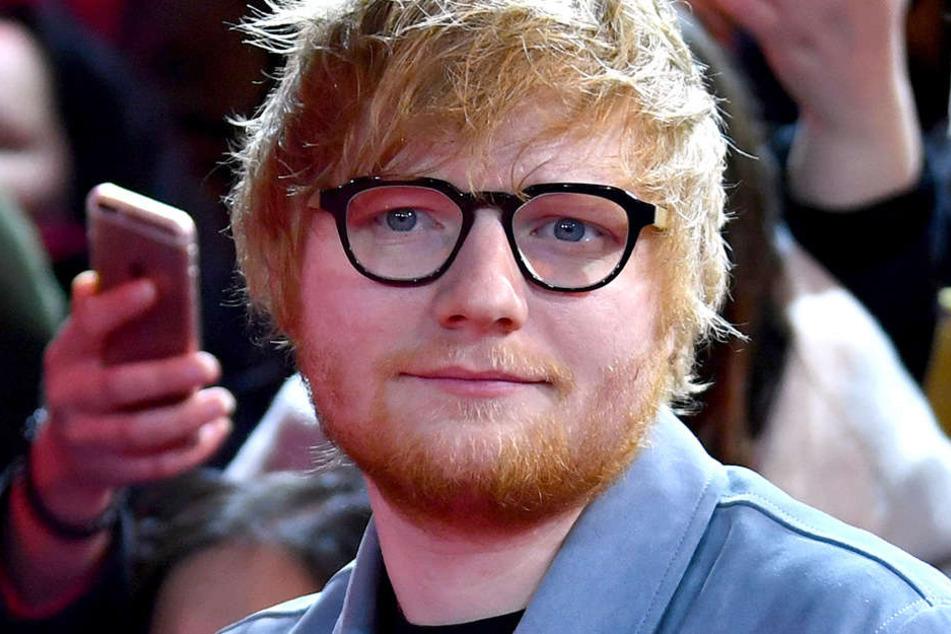 Ed Sheeran wich erst  einer lokalen Vogelpopulation. Jetzt soll er den Bäumen weichen - und nicht umgekehrt.