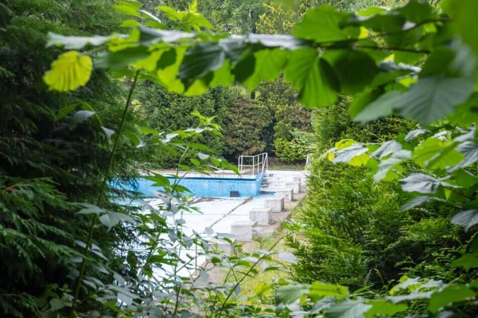 Im Erfenschlager Sommerbad sollen sich schon bald wieder zahlreiche Badegäste tummeln.