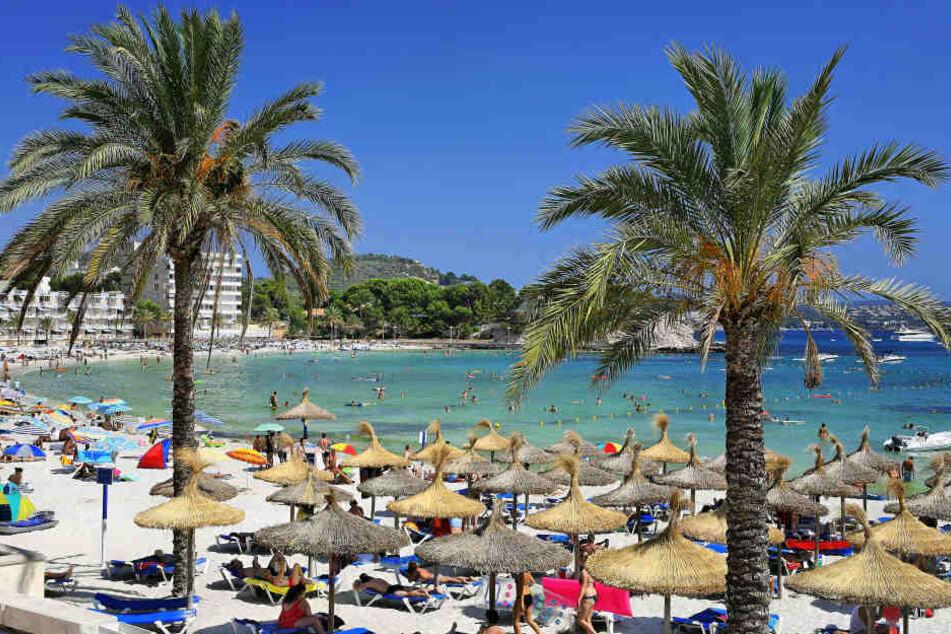 Mann schießt in Café auf Mallorca um sich