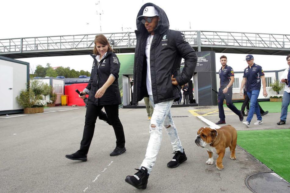Lewis Hamilton nimmt seine Hunde gelegentlich auch mit an die Rennstrecke.