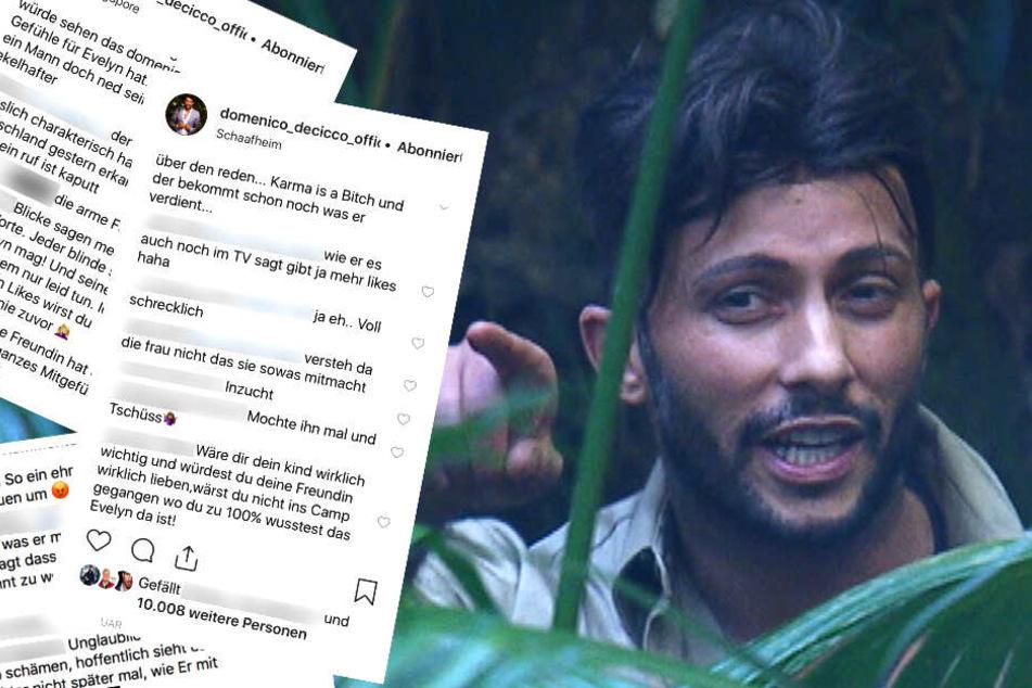 Dschungelcamp: Krasser Shit-Storm! So heftig giftet das Netz nach Lügen-Enthüllung über Domenico