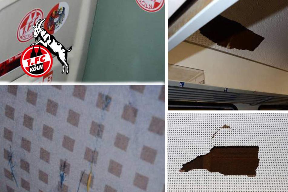 Anhänger des 1. FC Köln zerlegten Sonderzug: Jetzt drohen Konsequenzen
