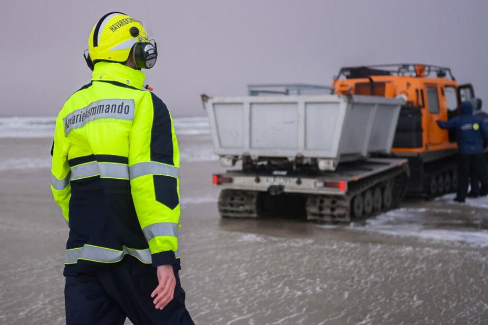 """Mitarbeiter des Havariekommandos suchen den Strand von Borkum nach Strandgut des Frachters """"MSC Zoe"""" ab. (Archivbild)"""