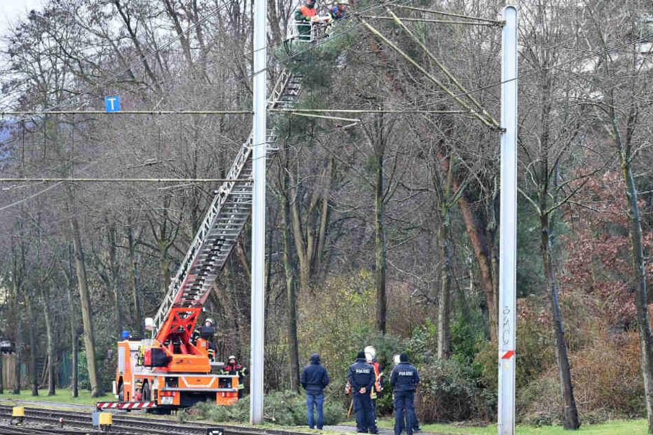 Polizisten und Feuerwehrleute versuchen einen auf die Oberleitung herabstürzenden Baum in Schach zu halten.