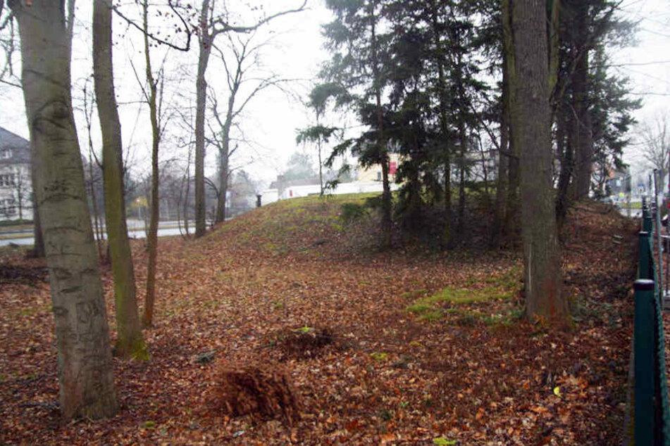 Noch sieht das Areal, wo das Wohnheim bald entstehen soll, eher wüst aus.