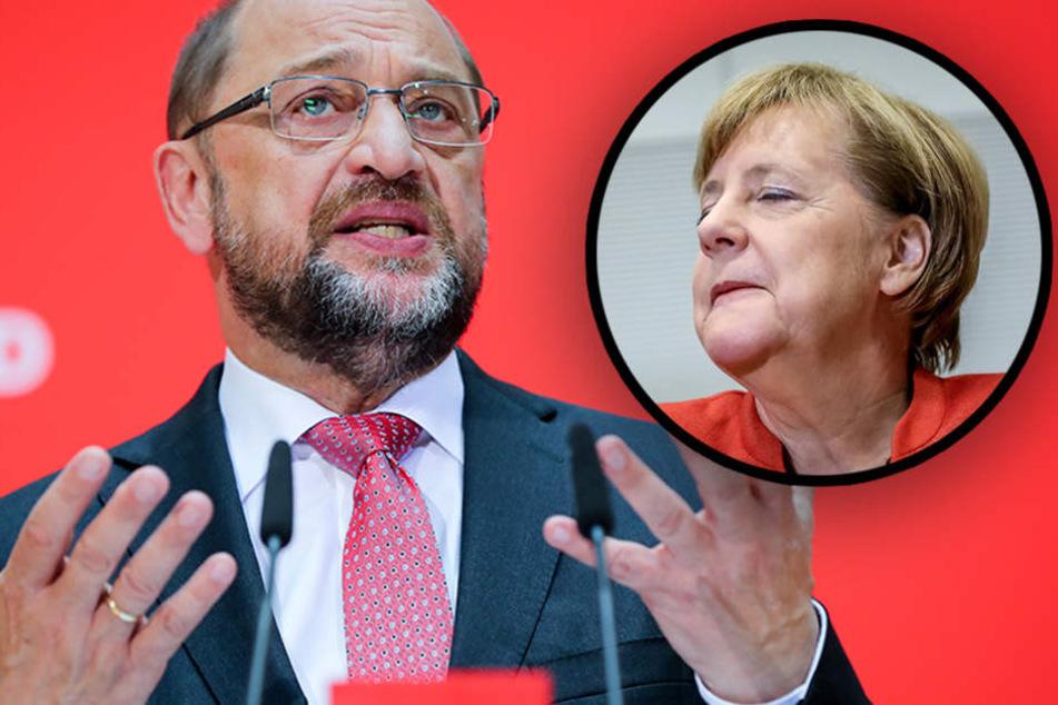 """""""Unverschämt"""": SPD-Chef Schulz sauer über erneute Merkel-Kandidatur"""