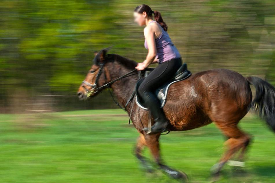 Dramatischer Reitunfall: Pferde gehen durch und werfen Reiterinnen ab