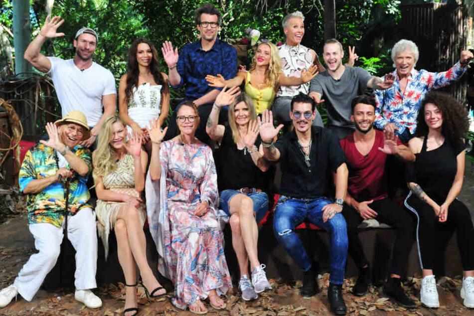 Hier grüßen sie noch aus dem Dschungel: Die Promis und die Moderatoren des RTL-Dschungelcamps 2019.