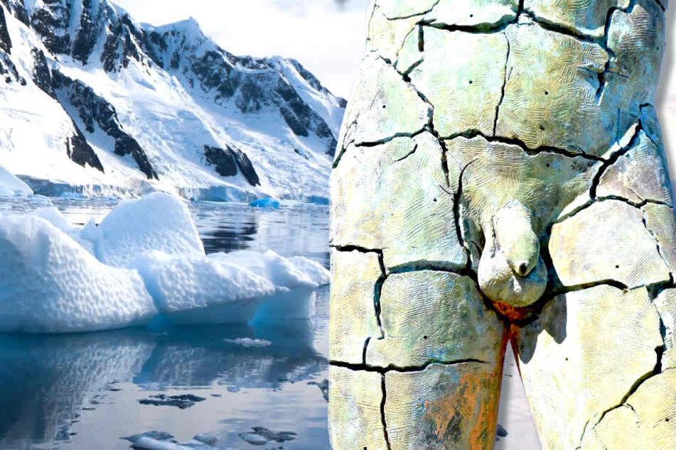 Gefährlicher Schwanzvergleich! Penis schuld am Klimawandel