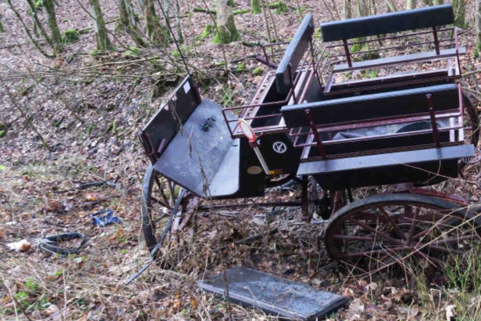 Das Foto zeigt die verunglückte Kutsche.
