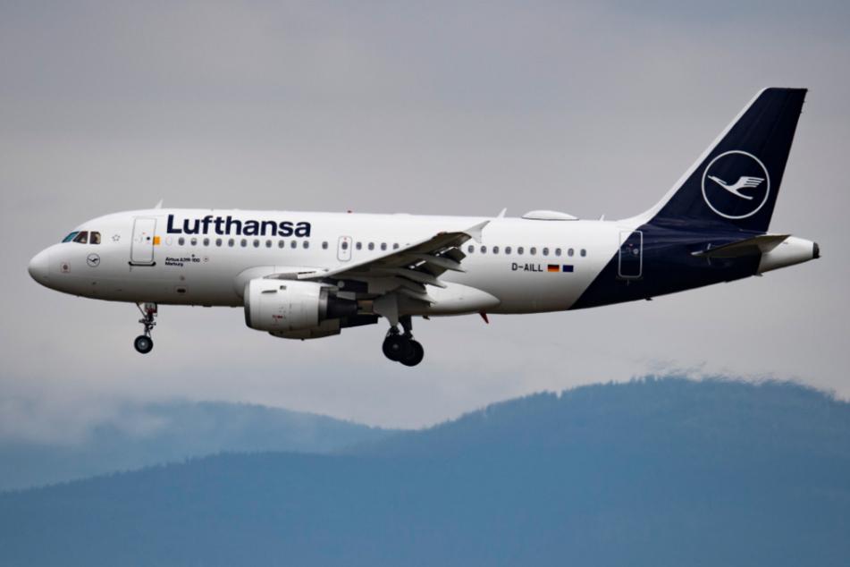 Eine Passagiermaschine der Lufthansa landet auf dem Flughafen in Frankfurt.