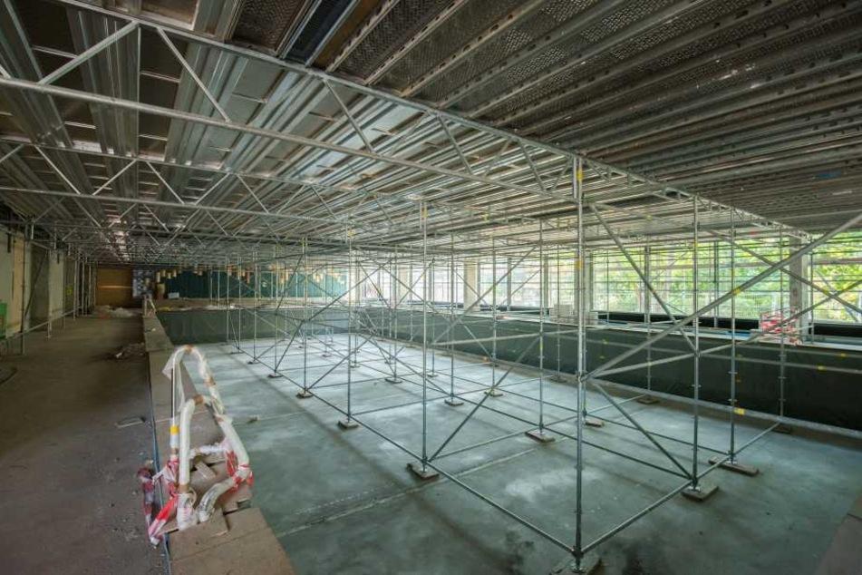 Die Sanierung der Schwimmhalle Gablenz dauert länger, die Wiedereröffnung ist für Anfang April geplant.