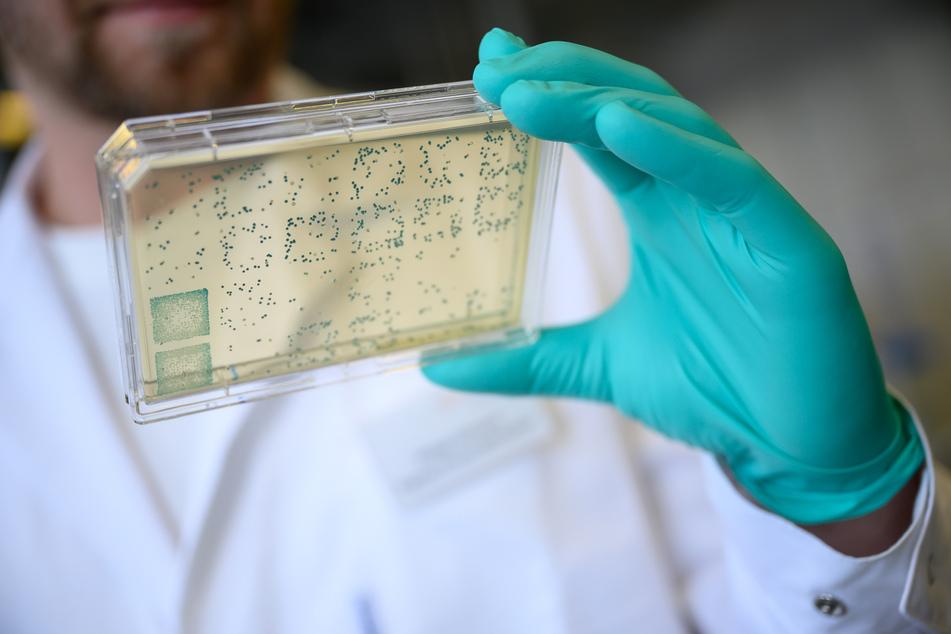 Gibt es in Deutschland bald einen Impfstoff gegen das Coronavirus?