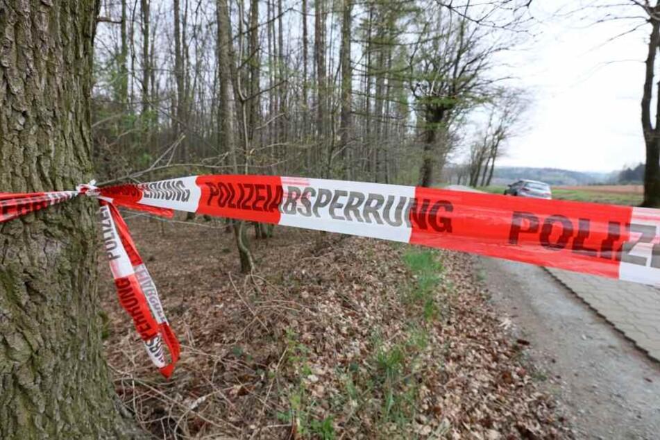 Auf diesem Waldweg soll sich das Mädchen befreit haben und ihrem vermeintlichen Entführer entkommen sein.
