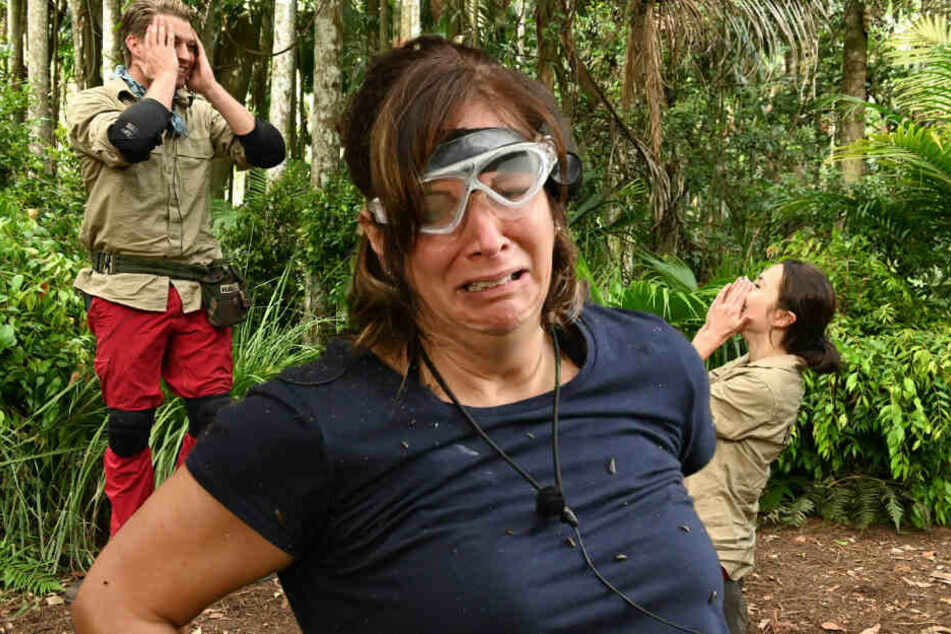 Dschungelcamp Tag 5: Danni Büchner schmeißt das Handtuch