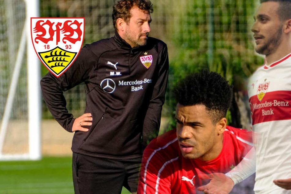 Nach Donis-Suspendierung: Didavi lobt VfB-Coach Weinzierl
