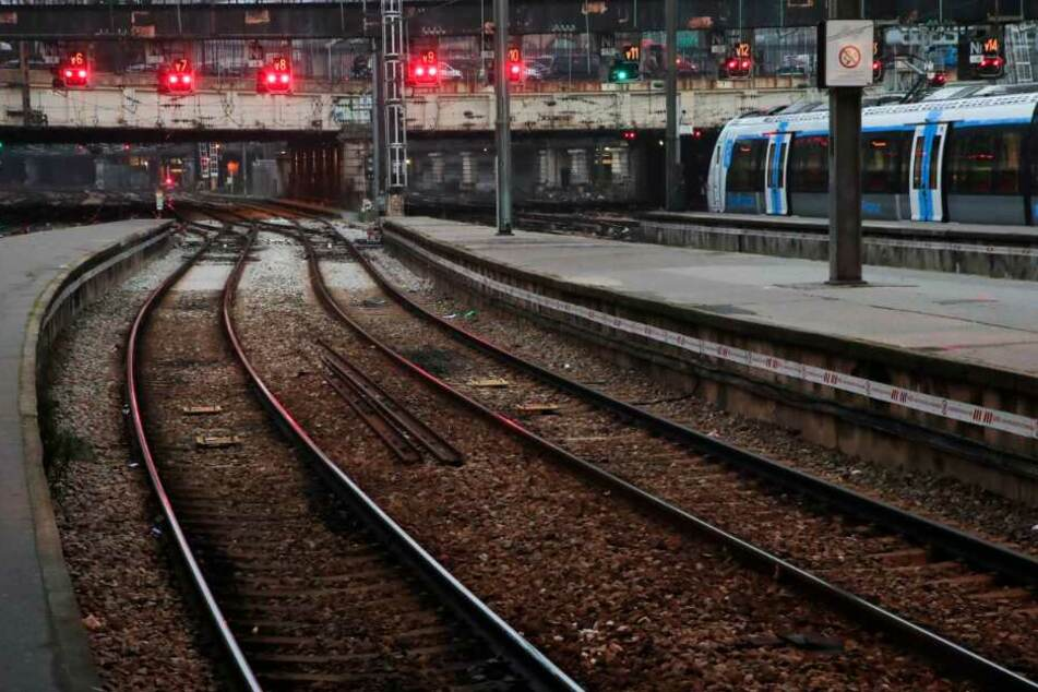 Die Hunde waren im Bahnhof über die Gleise gelaufen. (Symbolbild)