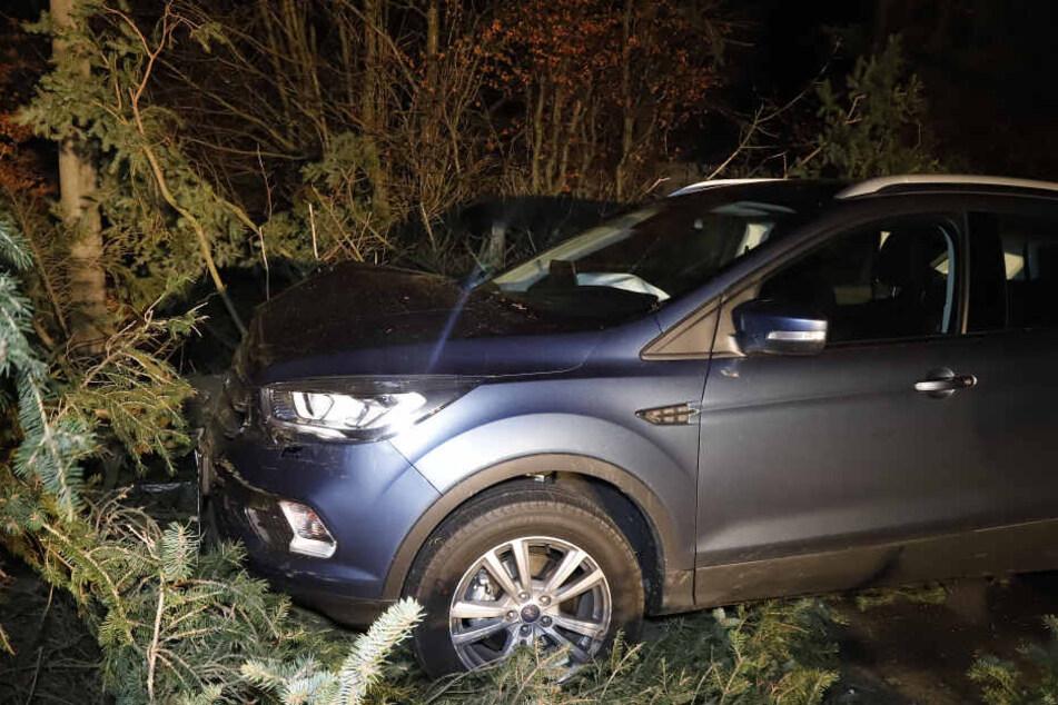 In Mittelbach fiel ein Baum vor ein fahrendes Auto. Die Fahrerin wurde verletzt.
