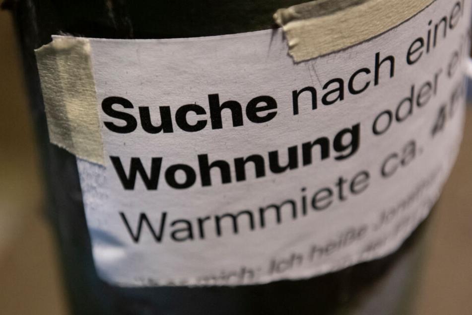 """""""Suche Wohnung"""" steht auf dem Zettel an einer Laterne unweit des Gleimtunnels im Berliner Norden."""