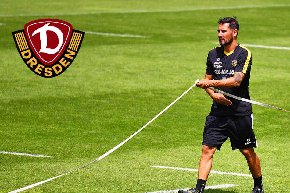 Dynamo-Coach Fiel und sein Plan: Keine Einheit ohne Taktik-Training!