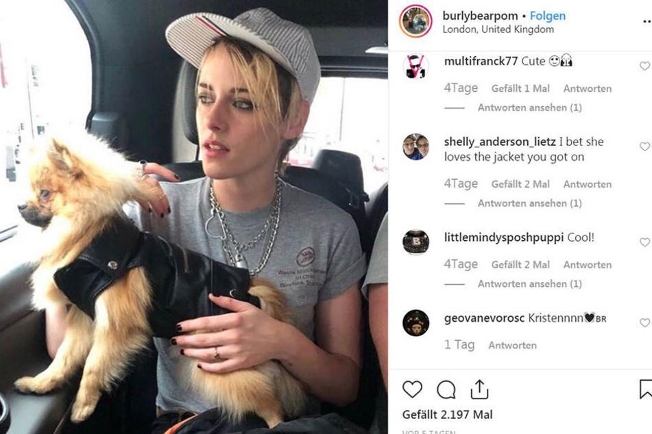 Kristen Stewart (29) ist im Hintergrund zu erkennen. Doch auch in diesem Foto zählt vor allen Dingen Burly...