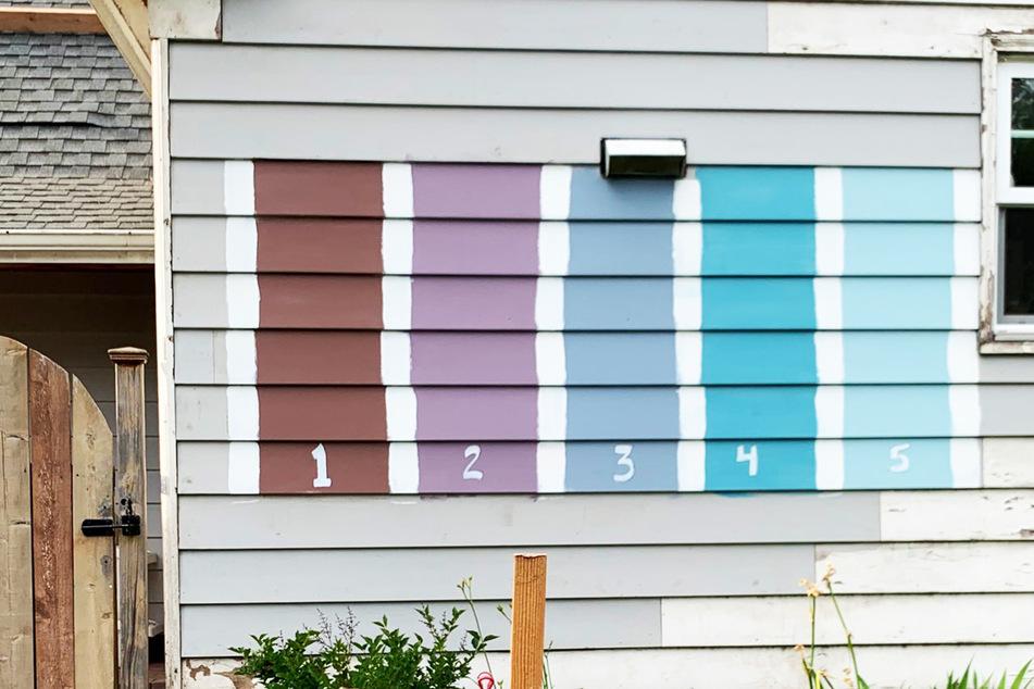 Nachbarn sollen über Haus-Farbe entscheiden, dann eskaliert die Umfrage