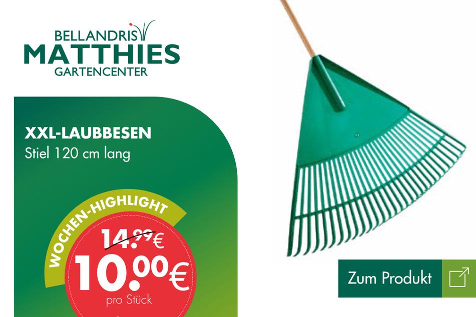 XXL-Laubbesen für 10 Euro.