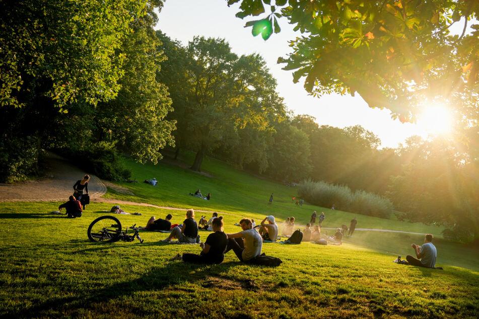 Sonne tanken mit der Abendsonne im Volkspark Wilmersdorf. Zum Herbstbeginn wird es in Berlin und Brandenburg wieder milder.