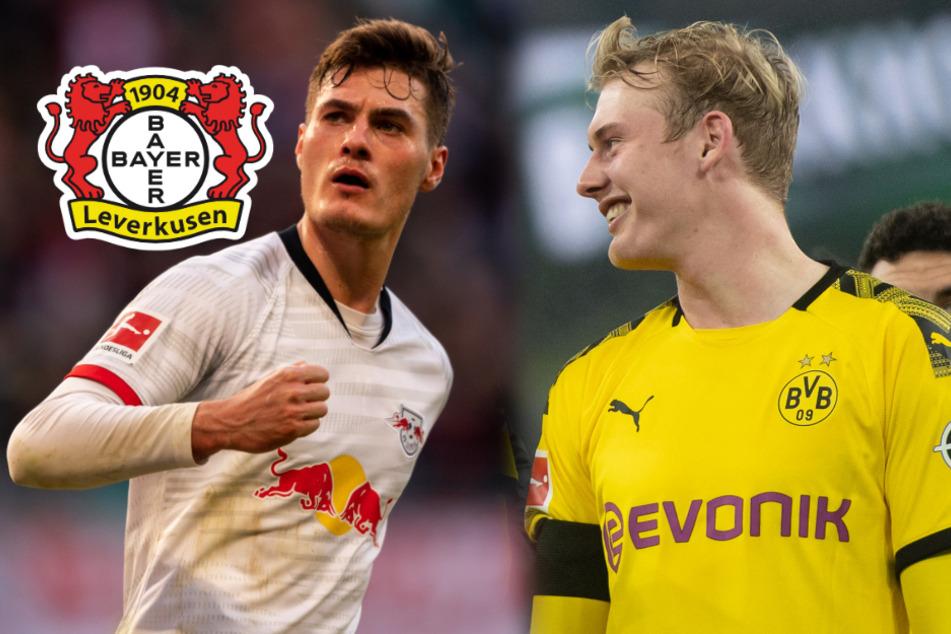 Leverkusen stellt Top-Transfer in Video vor: Was Julian Brandt damit zu tun hat