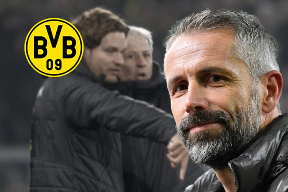 BVB will Marco Rose um jeden Preis: Gladbach-Trainer nach Dortmund? Max Eberl meldet sich