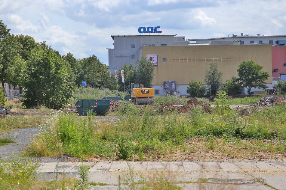 """Wochenlang wurde auf der Fläche neben dem Otto-Dix-Center das """"Unkraut"""" beseitigt."""