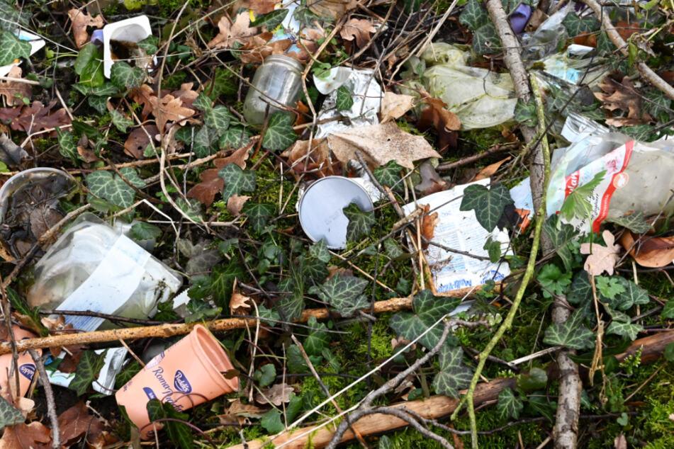 Illegal entsorgter Müll liegt am Rand eines Parkplatzes im hessischen Habichtswald auf dem Waldboden.