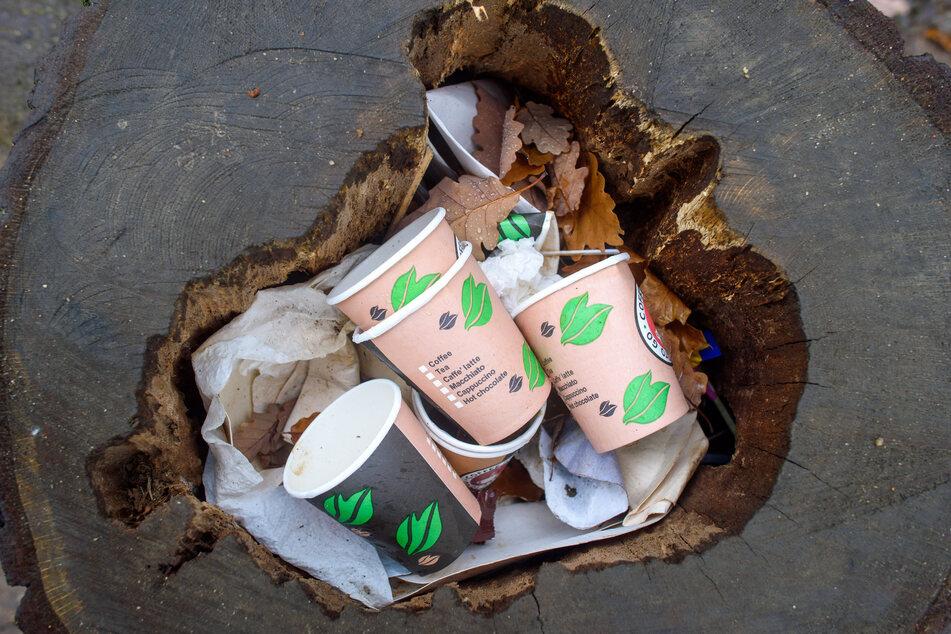 Kaffeebecher, die zum Mitnehmen angeboten werden, wurden in einem hohlen Stamm eines gefällten Baumes entsorgt.