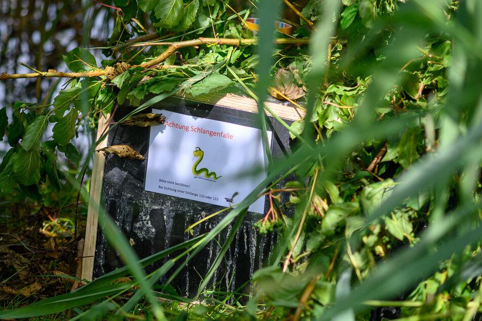"""Die Haldenslebener Feuerwehrleute verteilten Kisten mit den Aufschriften """"Achtung Schlangenfalle"""" und """"Bitte nicht berühren! Bei Sichtung einer Schlange 110 oder 112"""" im Schilf."""