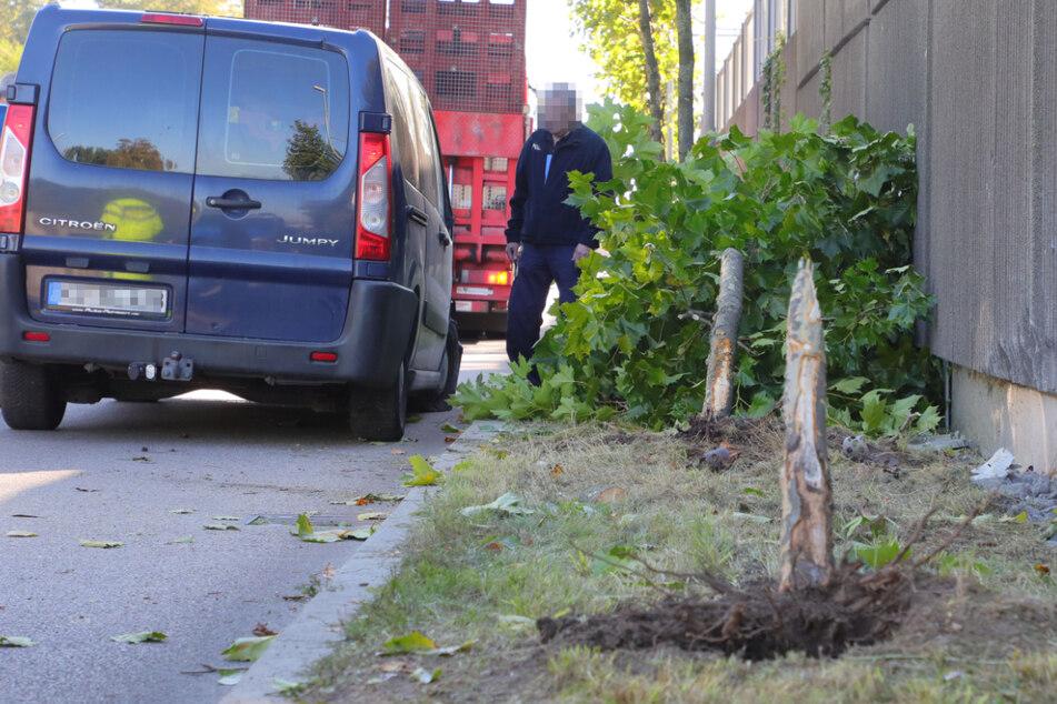 Transporter prallt in Chemnitz gegen zwei Bäume: Fahrer im Krankenhaus