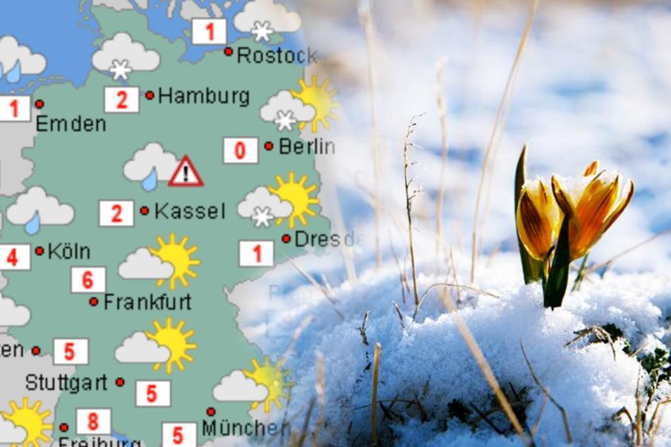 Nächste Woche wird es endlich milder in Deutschland. Die Eiseskälte haben wir vorerst überstanden.