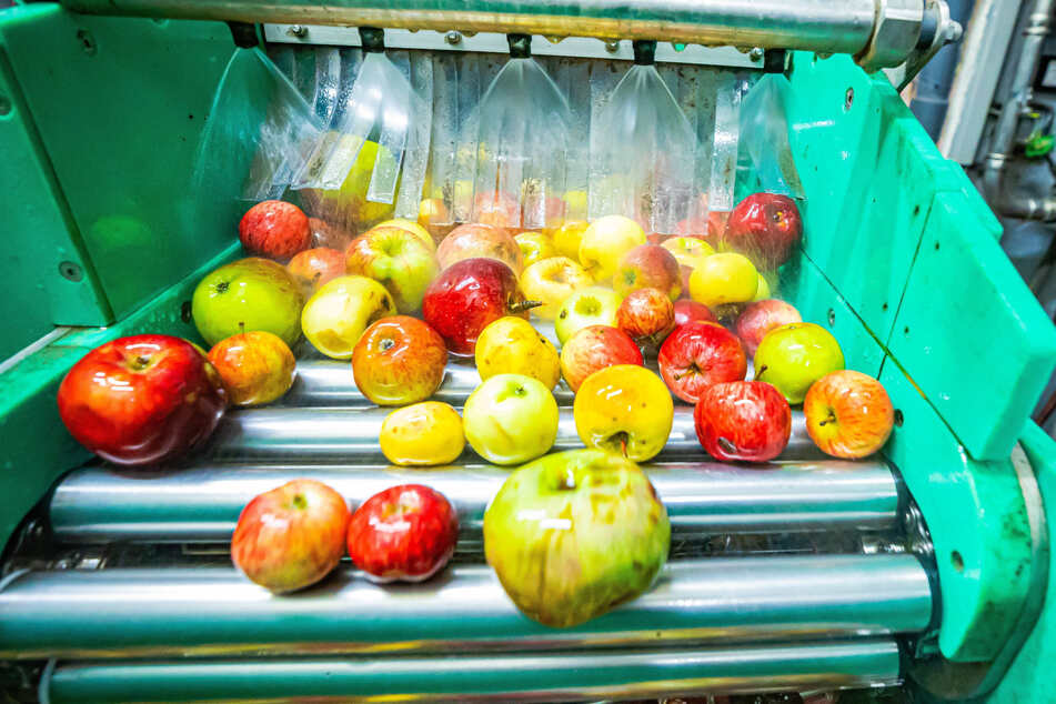 """Weniger als gedacht: 2020 wurden in Deutschland """"nur"""" 520 Millionen Tonnen Äpfel geerntet."""